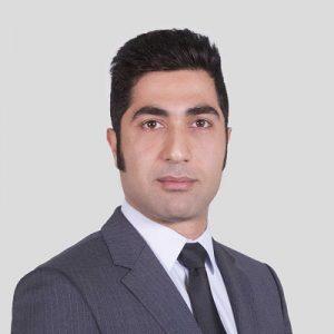 Abbas Bozorgirad, PhD